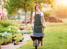 Gardener with wheelbarrow in green apron working in back yard, sunny. Healthy Lunches For Work, Snacks For Work, Healthy Snacks For Kids, Healthy Fruits And Vegetables, Green Apron, Lawn Care Tips, Landscape Maintenance, Urban Agriculture, Urban Homesteading