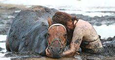 This Horse Endured 3 Terrifying Hours Stuck In The Mud. What Happened Next Is Remarkable http://www.deveoh.com/horse-stuck-in-mud …