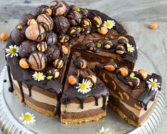 Chocolate, hazelnut and mocha cheesecake