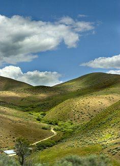 Road through Boise Hills
