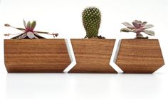 Boxcar Planters  Solid Walnut by RevolutionDH on Etsy, $38.00