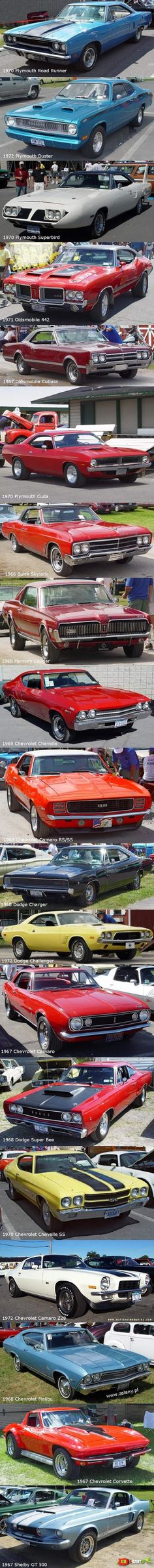 all in one muscle cars in one pic .....(no need to pin muscle cars anymore)...LOL