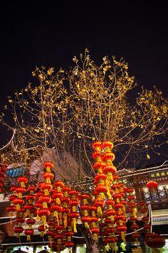 Lantern festival, Shanghai, China
