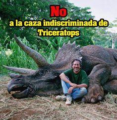 No a la caza de Triceratops
