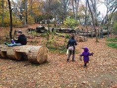 Donald and Barbara Zucker Natural Exploration Area, Prospect Park Alliance, Brooklyn New York, 2013