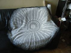 Off the Hook Astronomy: The Diatom Shawl