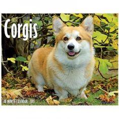 Just Corgis 2015 Calendar $11.99