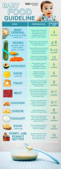 1 Baby Food Guideline for your Family #Infographics