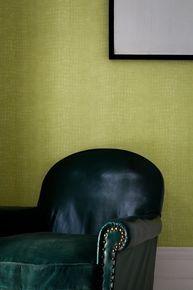 Crocodile Green Wallpaper, , large