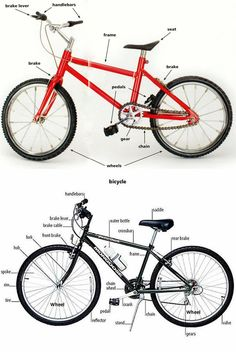 English Vocabulary: Parts of a Bicycle & Their Functions - ESL Buzz English Fun, English Tips, Learn English Words, English Study, English Lessons, English Language, English Grammar Tenses, Grammar And Vocabulary, English Idioms