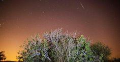 12/08/16. Chuva de meteoros Perseidas é registrada no ceú de Luzit, na região central de Israel. O fenômeno, que ocorre anualmente no mês de agosto, teve seu ápice nesta madrugada, segundo a NASA. As Perseidas têm este nome porque os meteoros parecem sair da constelação de Perseus.  Fotografia: Menahem Kahana / AFP.  https://noticias.uol.com.br/ciencia/album/2016/08/12/veja-imagens-da-chuva-de-meteoros-perseidas.htm#fotoNav=1