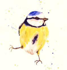 The Gentleman BLUE Tit Giclee Fine Art Print by eastwitching, $16.00