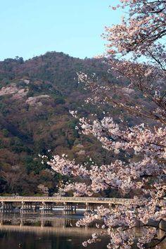 Arashiyama  #Kyoto#Japan  photography Kinichi Maeda