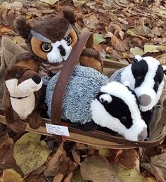 """De belles peluches très """"nature"""" Teddy Bear, Toys, Nature, Plushies, 6 Year Old, Animaux, Activity Toys, Naturaleza, Clearance Toys"""