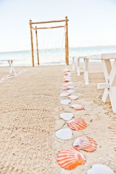 Beach wedding - seashells along the aisle