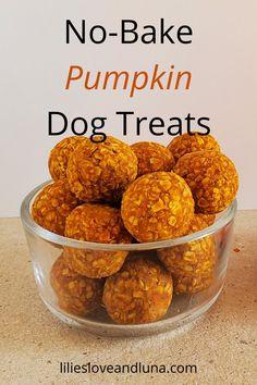 Easy 3 ingredient no-bake treats for your dog. Dog Biscuit Recipes, Dog Treat Recipes, Dog Food Recipes, Baked Pumpkin, Pumpkin Spice, Peanut Butter Dog Treats, Pumpkin Dog Treats, Dog Items, Dog Biscuits