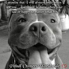 Pitbull Owners Worldwide