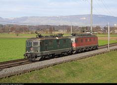 "Re II # 11330 (Re 420 # one of only two in green color with SBB Cargo) and Re # 11676 ""Zurzach"" (Re 620 # in multiple are running light from Basel to Domodossola near Bollodingen. Railroad Pictures, Swiss Railways, Switzerland, Europe, Basel, Trains, World, Locomotive, Levitate"