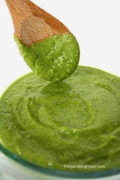 The Garden Grazer: Avocado Cilantro Sauce
