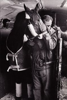 One of the last know photos of famed Thoroughbred, John Henry and his life long groom, Jose Mercado saying goodbye before parting ways as John Henry was on his way to his retirement home. Credit to Kentucky Photo's by Stewart Brown