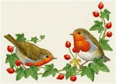 Painting of Two Robins & Rose-hips by Sarah Adams Snoopy Christmas, Christmas Bird, Retro Christmas, Winter Christmas, Clipart Noel, Adventure Tattoo, Robin Bird, Vintage Drawing, Xmas Ornaments