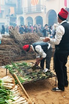 Gastronomical event in Catalonia. Cooking calçot on open fire during Calcotada in Valls