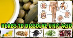 Herbs To Dissolve Uric Acid Crystals (Gout And Joint Pain) - Cures House Cure For Sleep Apnea, Sleep Apnea Remedies, Cough Remedies, Health Remedies, Herbal Remedies, Snoring Remedies, Acidic Diet, Anti Aging, Herbs
