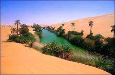 واحة سيوه  Siwa Oasis , Western Desert, Egypt
