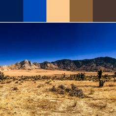《Ranch-scape Palette》
