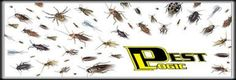 Pest Logic is located in the Palm Beach county, Broward and Dade areas.  Pest logic  provide quality pest control services that include Bed bug treatments, Pest management, Termite problem, Rodent problem, soil pre-treatment, wildlife entrapment, complete lawn solutions, fleas and ticks treatment for our furry friends, etc.