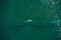 New Zealand. Photo: Burkard #surfer #surferphotos