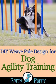 "To learn how to make your own DIY Weave Pole Design for Dog Agility Training visit our post ""How to Make a Dog Agility Course Out of Household Items - 7 Different Stations! Agility Training For Dogs, Training Your Puppy, Dog Agility, Dog Training Tips, Potty Training, Easiest Dogs To Train, Dog Care Tips, Pet Tips, Pet Care"