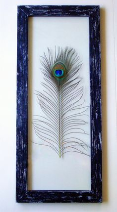 Genuine Peacock Feather Framed (glass on the front and back, so you can see through) Wall Art. (I would probably use a less rustic frame...Something fancier... either painted black or a rich, dark purple...)  I really like this idea!