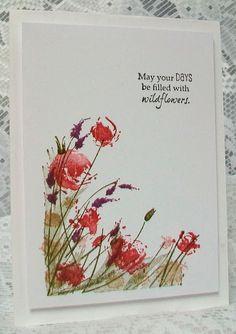 Viv's Visuals : Wildflowers