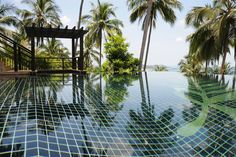Golden Palm Villa   Luxury Retreats