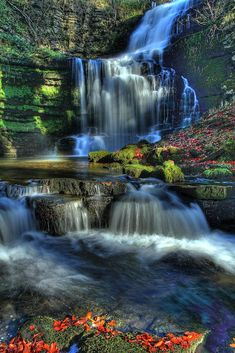 Our Beautiful World: Scaleber Force, Yorkshire Dales National Park, England Beautiful World, Beautiful Places, Beautiful Pictures, All Nature, Amazing Nature, Beautiful Waterfalls, Beautiful Landscapes, Landscape Photography, Nature Photography