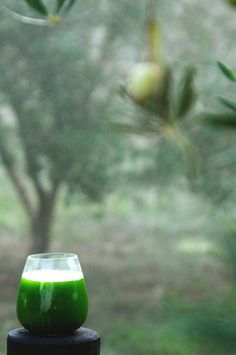 Green Jazz Juice! Alkalizing and refreshing feel-good recipe.