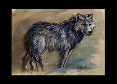 arctic wold - traditional painting