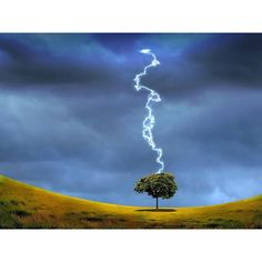 Nature landscape with #thunderstorm and #lighting on the background  #Landscapes #Nature - Dollar Stock Images - http://kozzi.tv/10ezni
