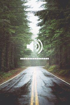 Wallpaper de floresta com aplicação de regulador de som. Está imagem ficará perfeita no seu fundo de tela do iPhone!