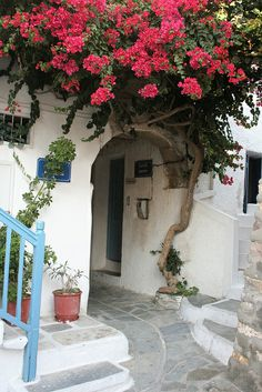 Flowers Over The Door - Naxos, Greece