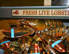 The best prices on live lobsters you'll find and we even cook them FREE before 5pm!