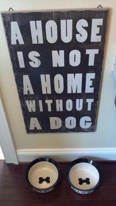 dog good pet essay
