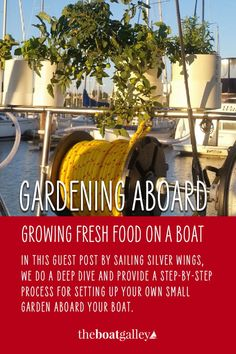 With some time and some simple ingredients you can have a garden on your boat. Here's how. #theboatgalley Boat Projects, Easy Projects, Living On A Boat, Organic Structure, Diy Boat, Red Tomato, Side Salad, Fresh Herbs, Boating