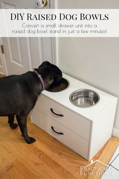 Turn a small dresser into a DIY raised dog bowl stand just by cutting two holes in the top! It takes less than half an hour and all you need is a jigsaw!