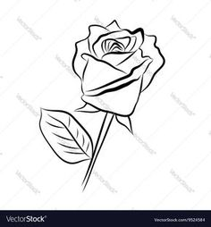 Vector image of Sketch line drawing of rose Vector Image, includes love, white, rough, drawing & petal. Illustrator (.ai), EPS, PDF and JPG image formats.