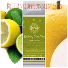 Enjoy the Scent of Spring with our new collection!Order now @ http://brittanyconners.scentsy.us
