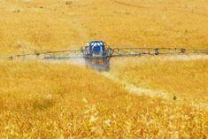 Monsanto's Roundup. Enough to Make You Sick.