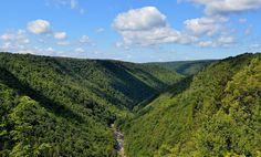 Pendleton Point in Tucker County, with a view of the Blackwater River winding through the canyon below. Eric Furr Photography