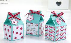 POOTLES Stampin Up UK SPRINGWATCH Pinch Closure Mini Balm Box Tutorial 2